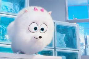 Secret Life Of Pets Trailer Four SpicyPulp