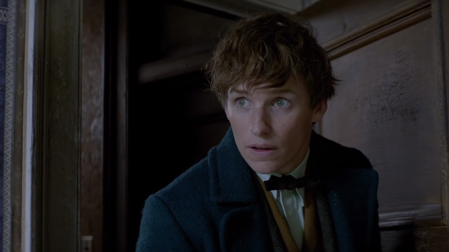 Take a closer look at 'Fantastic Beasts and Where To Find Them'