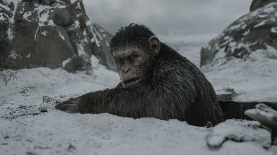 'War for the Planet of the Apes' – Review
