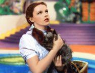 Sky Movies Vintage Wizard Of Oz