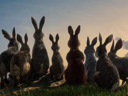 Watership Down Trailer SpicyPulp