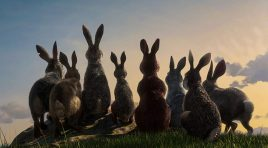 A timeless classic returns in 'Watership Down'