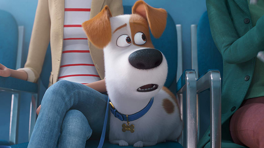 The comedy arrives with new trailer for 'The Secret Life Of Pets 2'