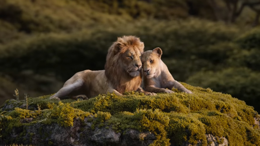 Feel the love with a new spot for 'The Lion King'