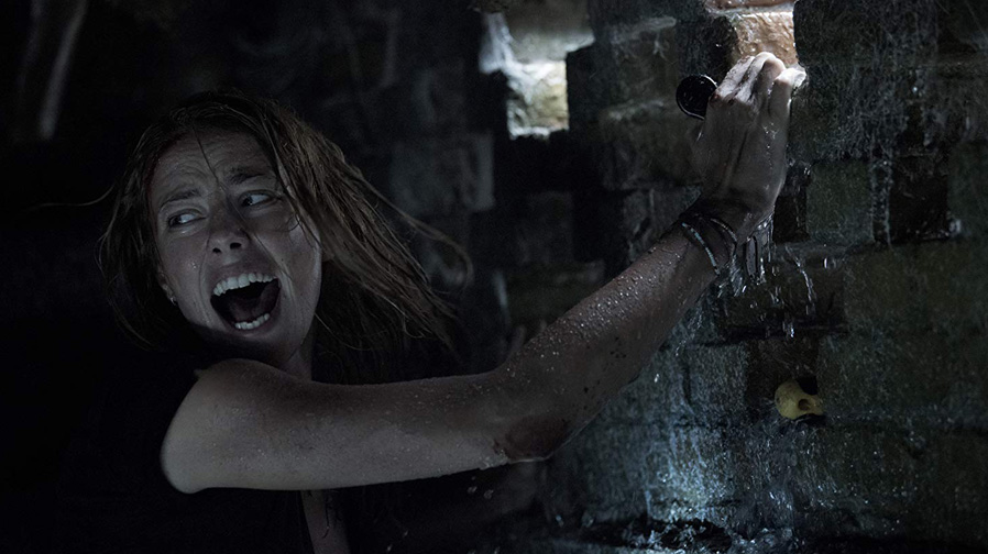 'Crawl' – Review