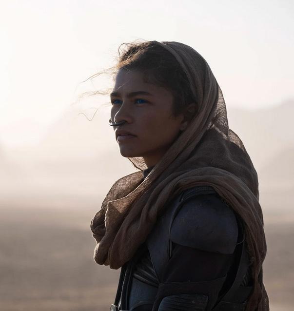 Dune New Look SpicyPulp