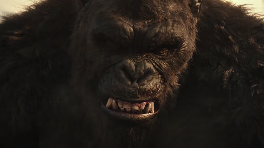 The titans battle in first trailer for 'Godzilla vs Kong'
