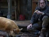 Pig Review SpicyPulp